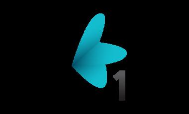 RTV 1